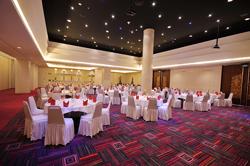 spph-conference-www-Negara room